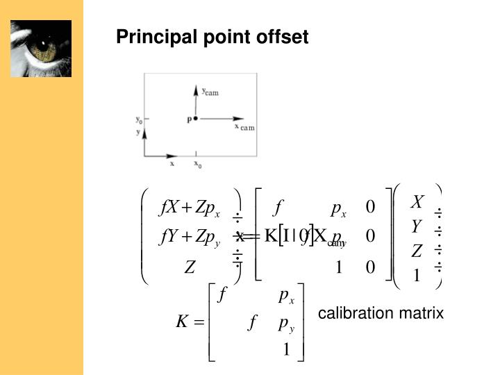 Principal point offset