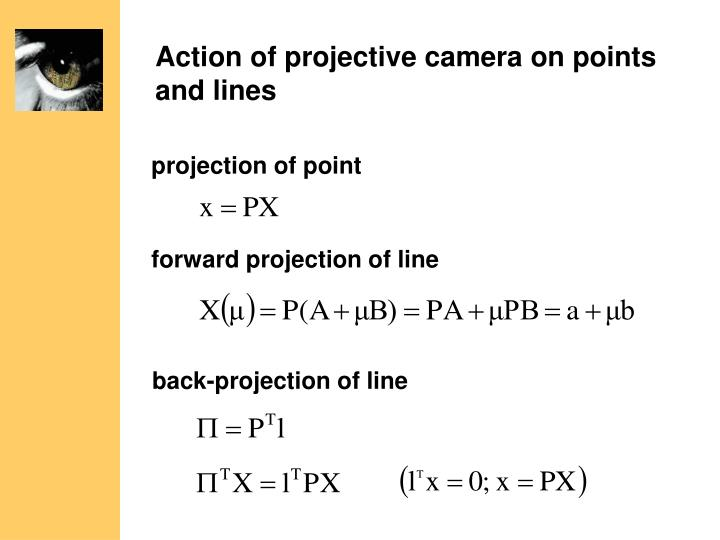 Action of projective camera on points and lines