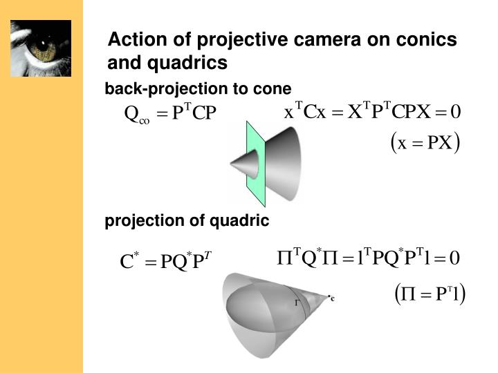 Action of projective camera on conics and quadrics