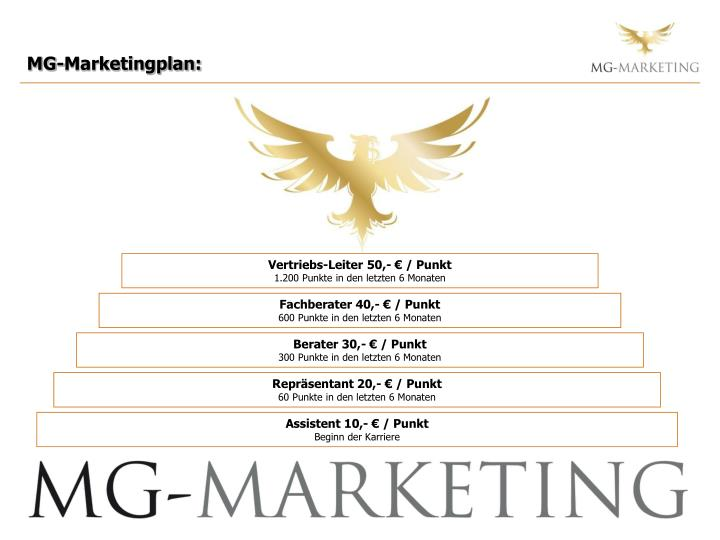 MG-Marketingplan:
