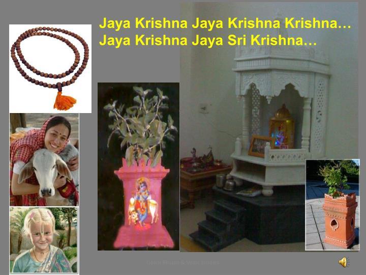 Jaya Krishna Jaya Krishna Krishna…