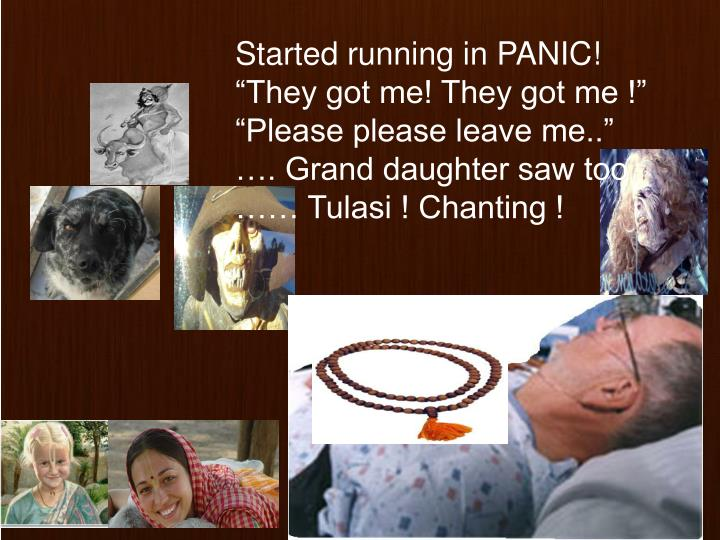 Started running in PANIC!