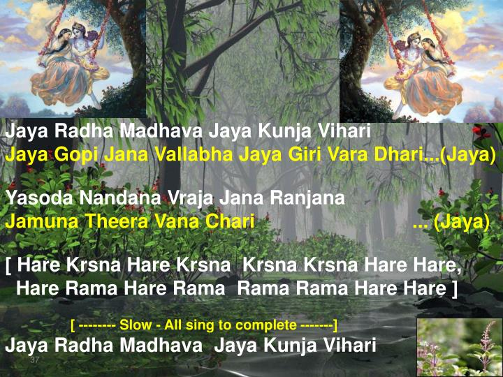 Jaya Radha Madhava Jaya Kunja Vihari