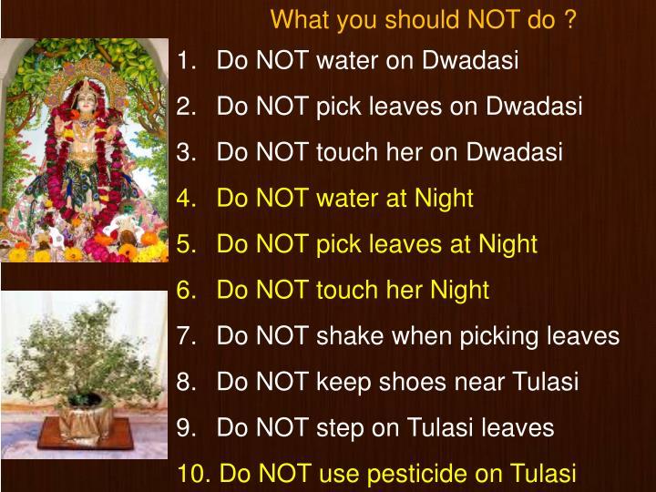 Do NOT water on Dwadasi