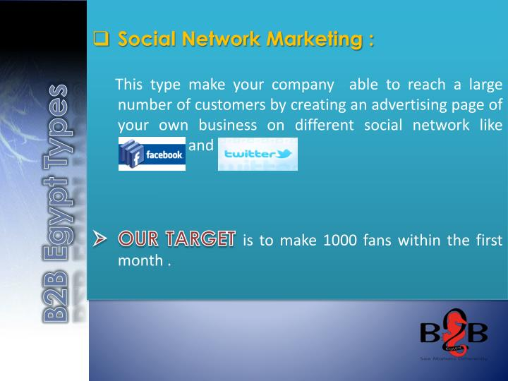 Social Network Marketing :