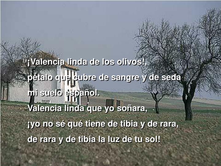 ¡Valencia linda de los olivos!,