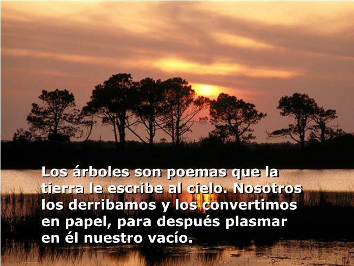 Los árboles son poemas que la tierra le escribe al cielo. Nosotros los derribamos y los convertimos en papel, para después plasmar en él nuestro vacío.