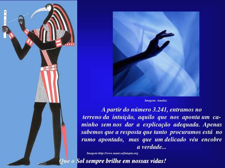 Imagem: Amaluz