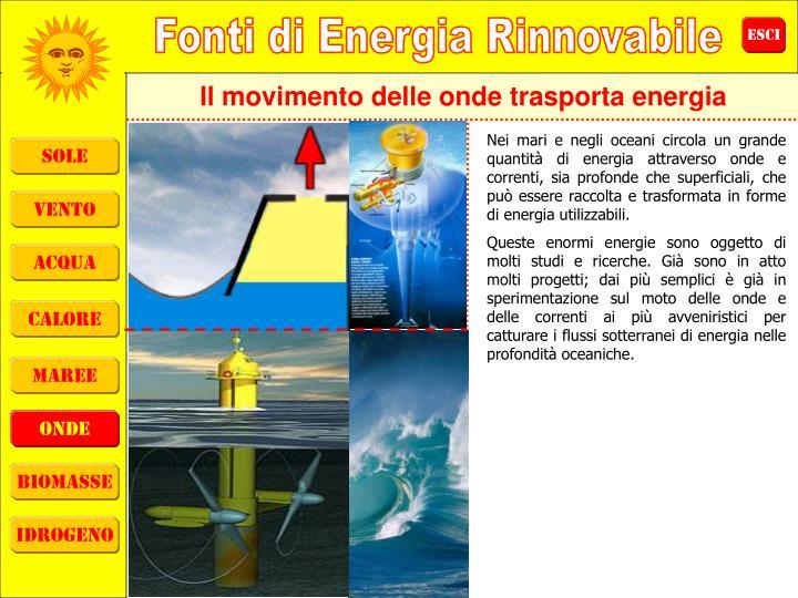 Il movimento delle onde trasporta energia