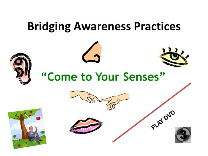 Bridging Awareness Practices