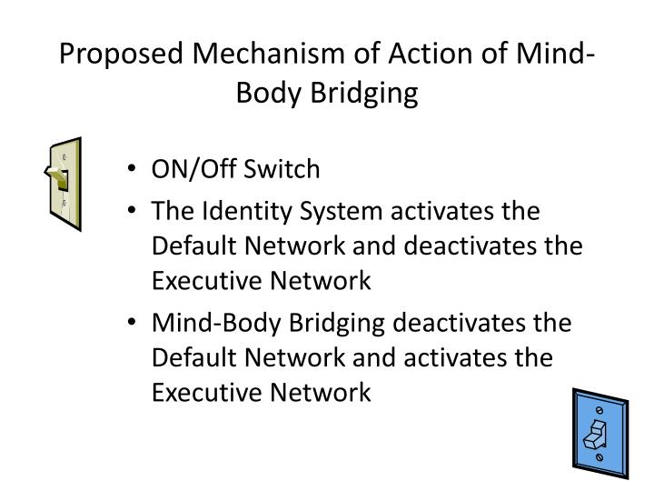 Proposed Mechanism of Action of Mind-Body Bridging