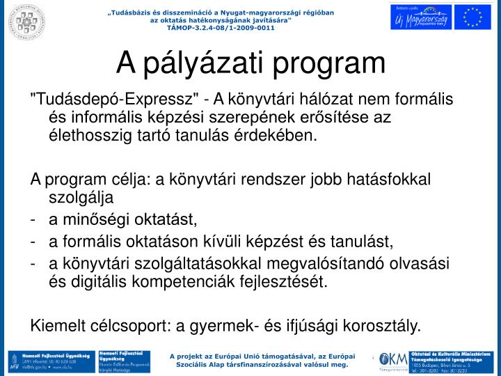 A pályázati program