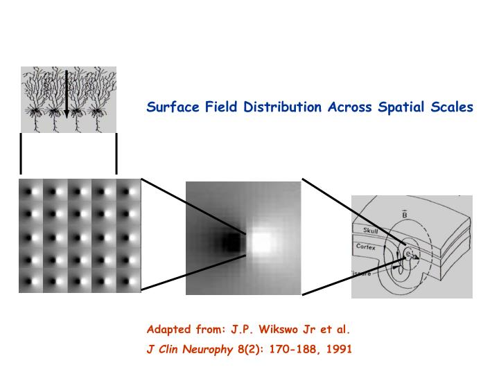 Surface Field Distribution Across Spatial Scales