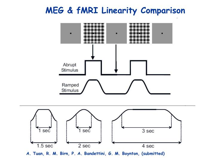 MEG & fMRI Linearity Comparison