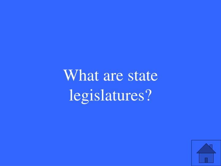 What are state legislatures?