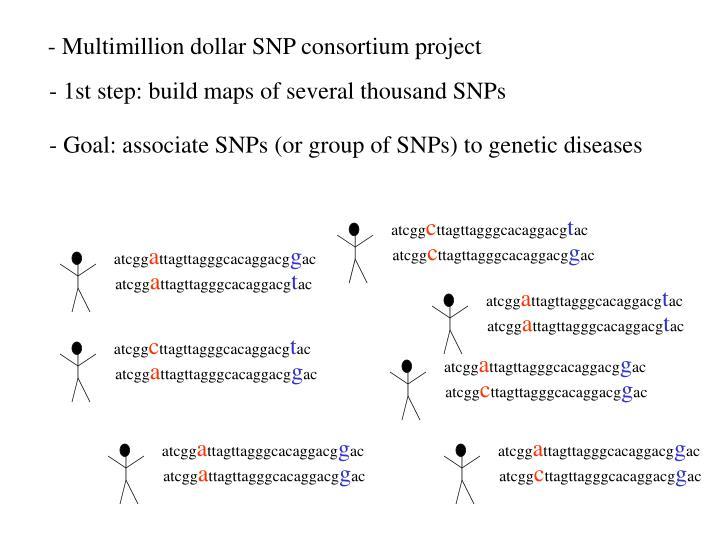 - Multimillion dollar SNP consortium project