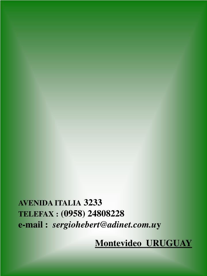 AVENIDA ITALIA