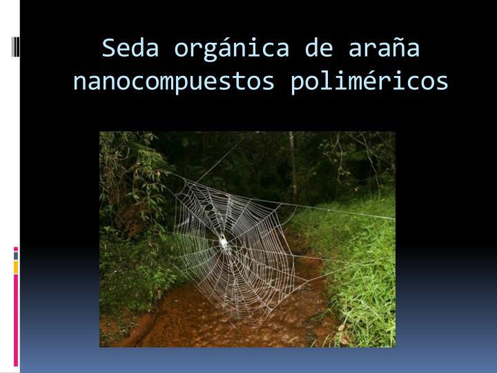 Seda orgánica de araña