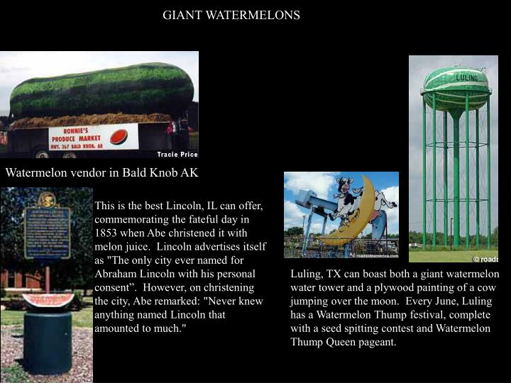 GIANT WATERMELONS