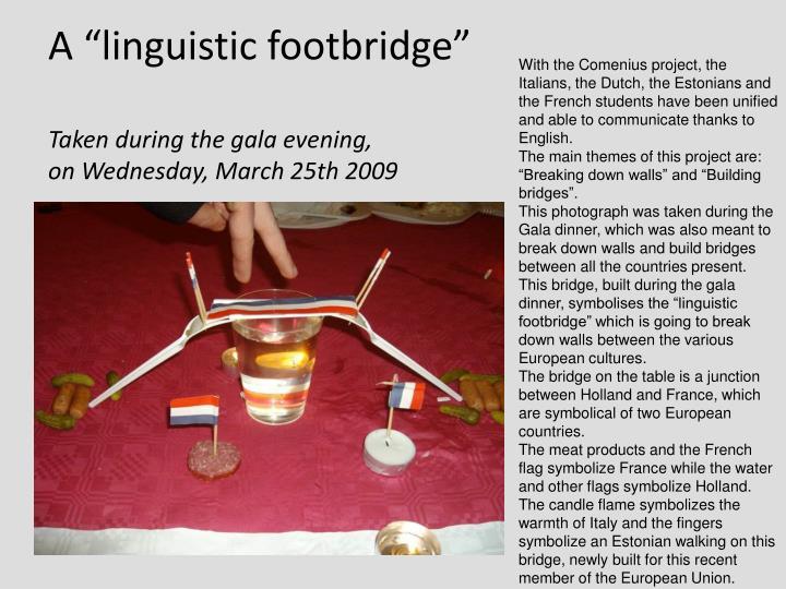 "A ""linguistic footbridge"""