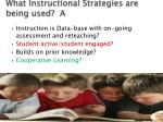 what instructional strategies are being used a
