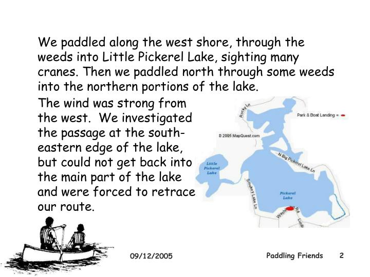 We paddled along the west shore, through the weeds into Little Pickerel Lake, sighting many cranes. Then we paddled north through some weeds into the northern portions of the lake.