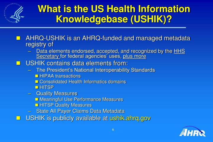 What is the US Health Information Knowledgebase (USHIK)?