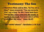 testimony the son