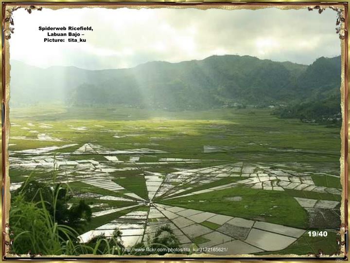 Spiderweb Ricefield, Labuan Bajo – Picture:  tita_ku