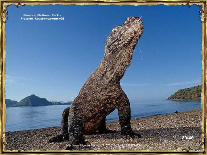 Komodo National Park – Picture:  keatonhepworth08