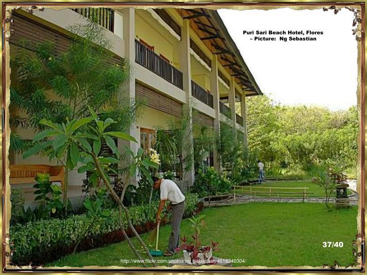 Puri Sari Beach Hotel, Flores – Picture:  Ng Sebastian
