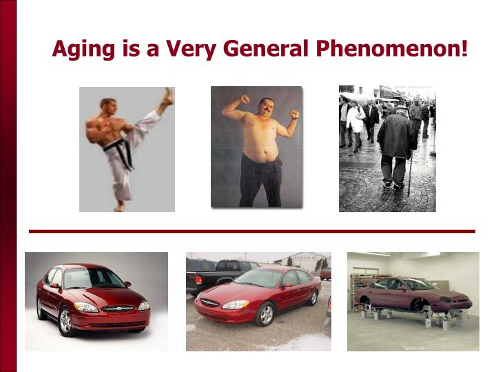 Aging is a Very General Phenomenon!