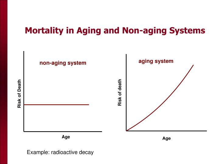 Mortality in Aging and Non-aging Systems