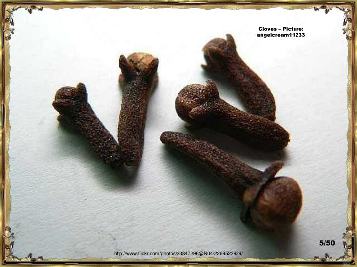 Cloves – Picture:  angelcream11233