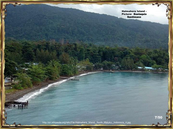 Halmahera Island - Picture: