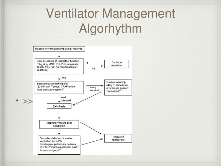 Ventilator Management Algorhythm