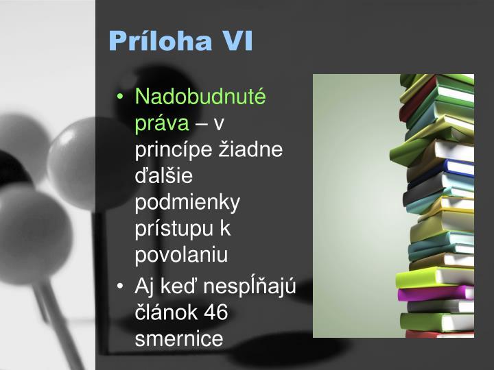 Príloha VI