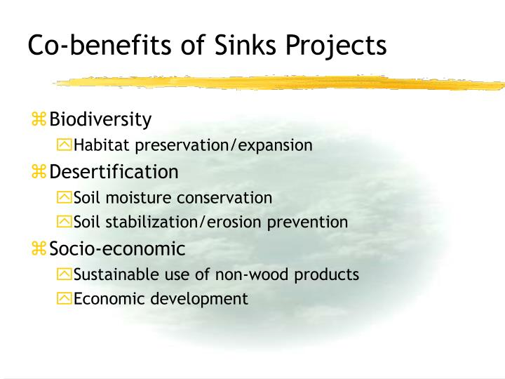 Co-benefits of Sinks Projects