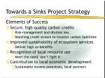 towards a sinks project strategy