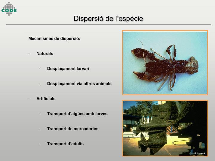 Dispersió de l'espècie