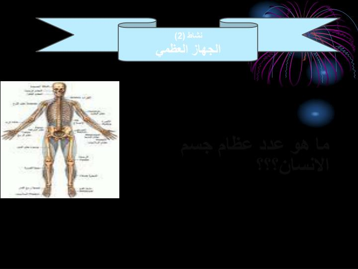 ما هو عدد عظام جسم الانسان؟؟؟