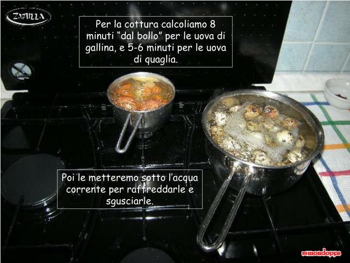 """Per la cottura calcoliamo 8 minuti """"dal bollo"""" per le uova di gallina, e 5-6 minuti per le uova di quaglia."""