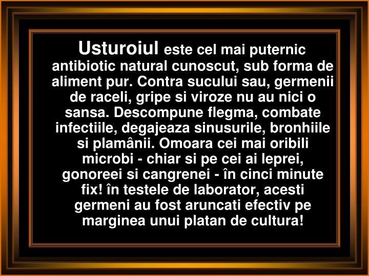 Usturoiul
