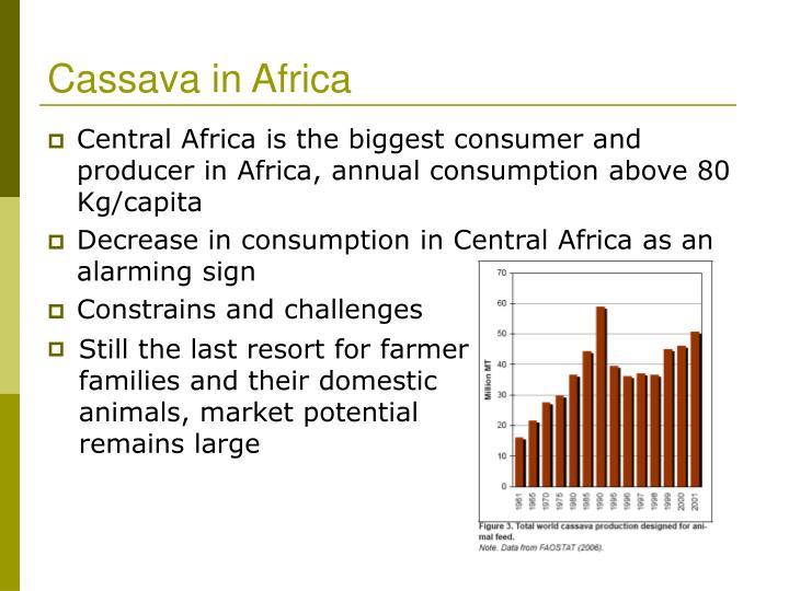 Cassava in Africa