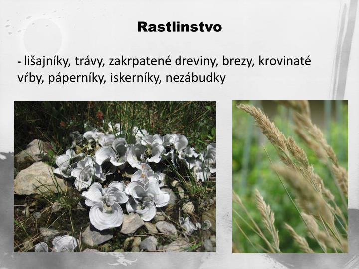 Rastlinstvo
