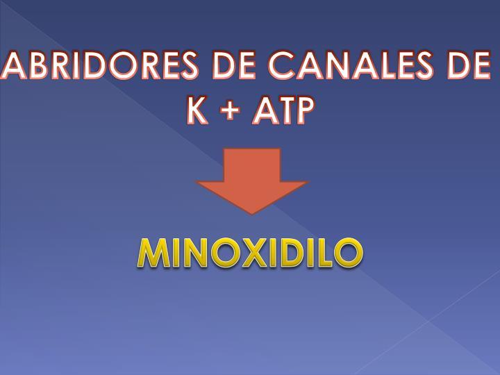 ABRIDORES DE CANALES DE