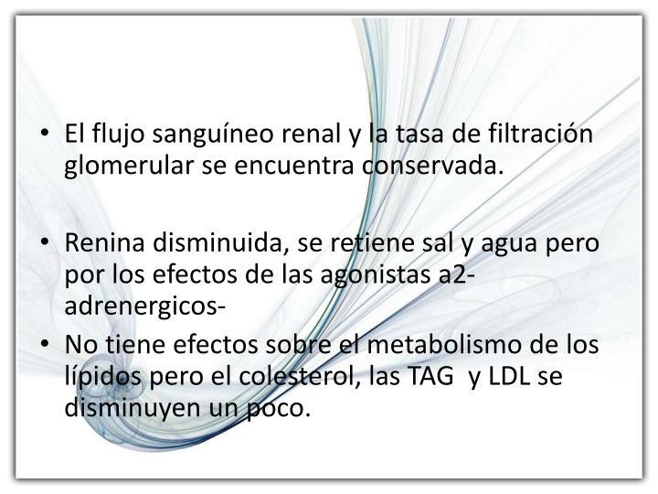 El flujo sanguíneo renal y la tasa de filtración glomerular se encuentra conservada.