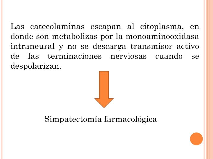 Las catecolaminas escapan al citoplasma, en donde son metabolizas por la monoaminooxidasa intraneural y no se descarga transmisor activo de las terminaciones nerviosas cuando se despolarizan.