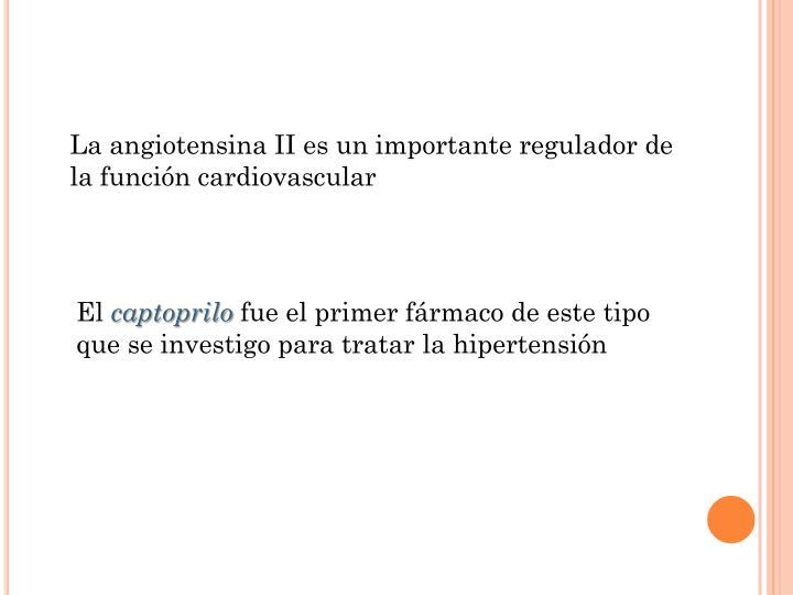 La angiotensina II es un importante regulador de la función cardiovascular