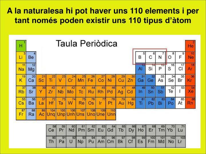 A la naturalesa hi pot haver uns 110 elements i per tant només poden existir uns 110 tipus d'àtom